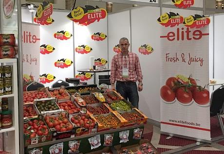 """""""Tomatenprijzen sinds vorige week dagelijks gedaald"""""""