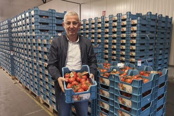 """""""Concurrentie van kasgroenten uit het Zuiden weggevallen"""""""